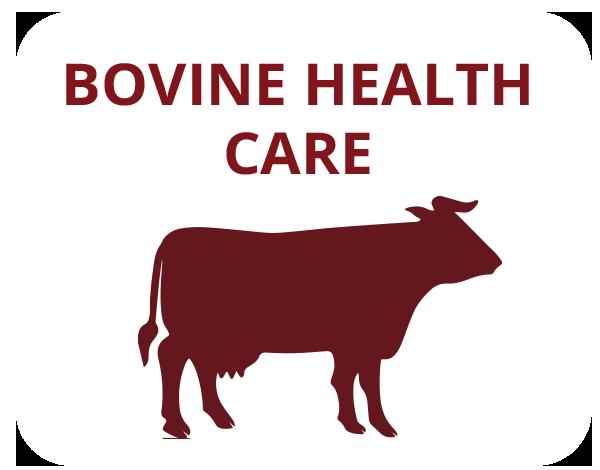 bovine-care