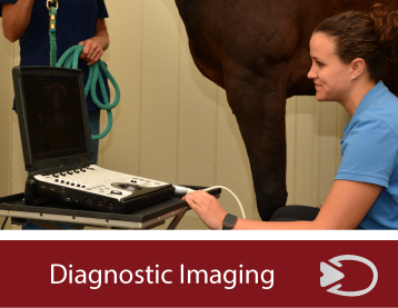 diagnostic-imaging