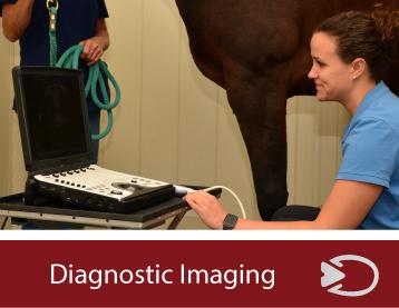 diagnostic-imaging