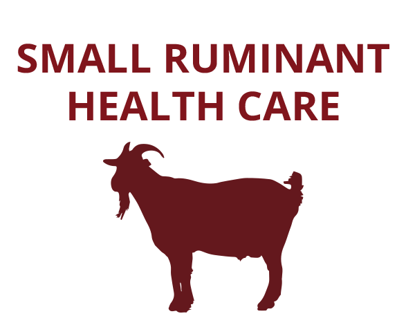 goat-health-care