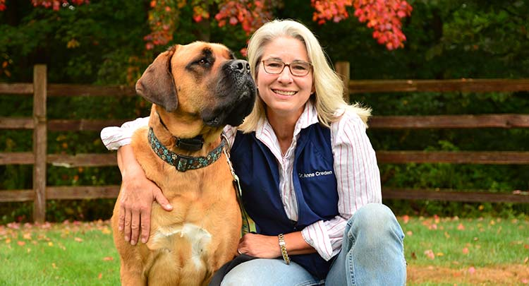 Dr. Creden at Salmon Brook Veterinary Hospital