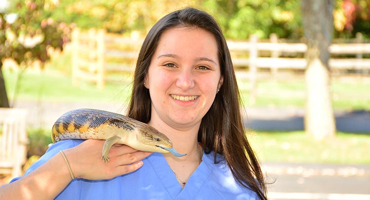 Exotic pet Veterinary Care in Connecticut and West Massachusetts