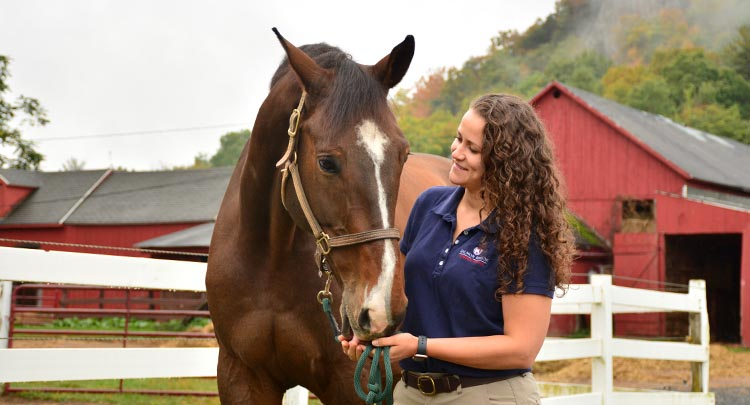 horse-care-granby-ct-3