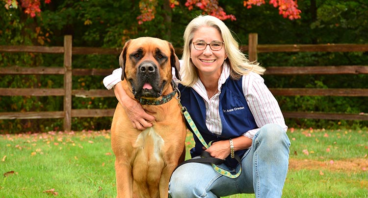 Canine Health Care