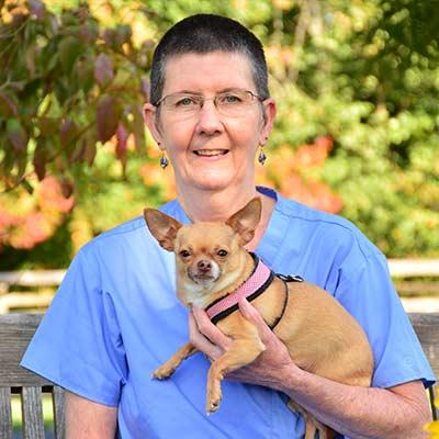 Tara at Salmon Brook Veterinary Hospital